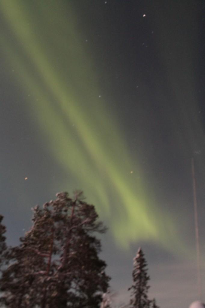 Zdjęcia: okolice parku Yllas, laponia, zielona zorza, FINLANDIA