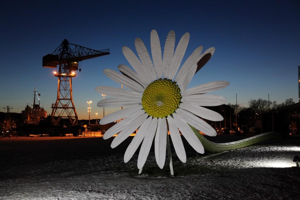 Zdjęcia: Turku, Varsinais-Suomi, Stokrotka w porcie, FINLANDIA