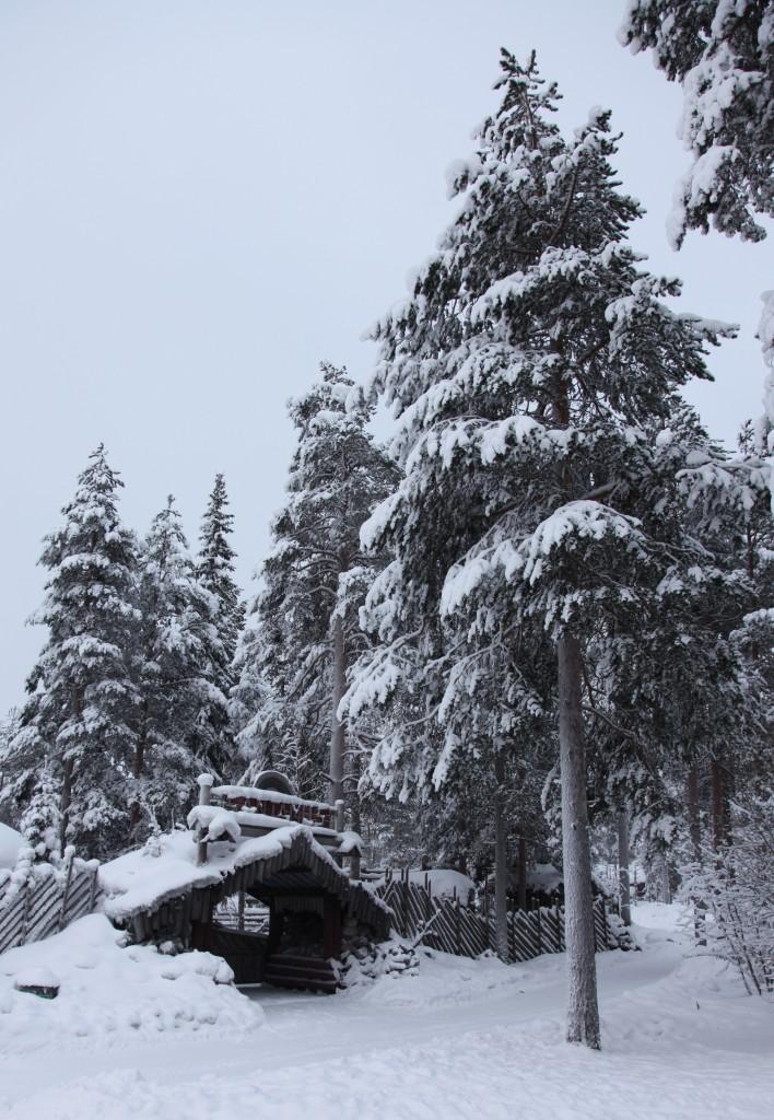 Zdjęcia: Rovaniemi, Laponia, Pejzaż zimowy, FINLANDIA