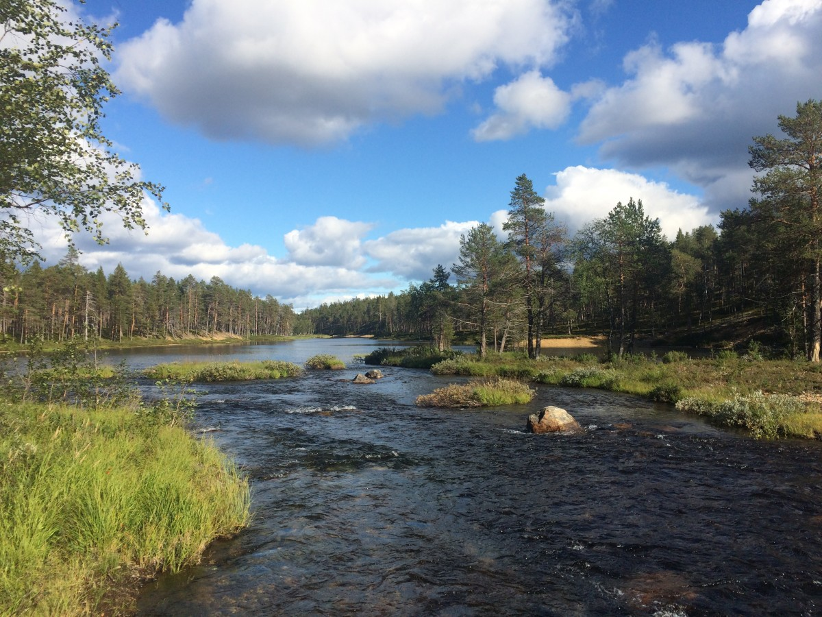 Zdjęcia: Finland , Lapland, Urho Kekkonen Park Narodowy , FINLANDIA
