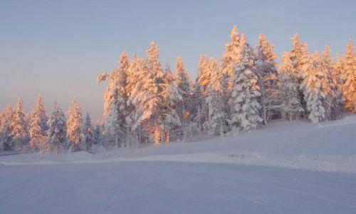 FINLANDIA / Laponia / Akasjompolo / wyprawa za koło podbiegunowe