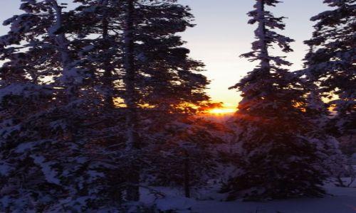 FINLANDIA / Laponia / Akasjampolo / prześwit