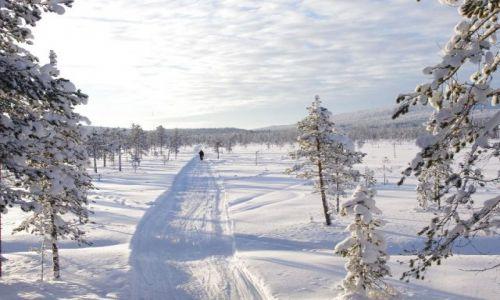 FINLANDIA / Północ Finlandii / Laponia / Mały człowiek wśród bieli