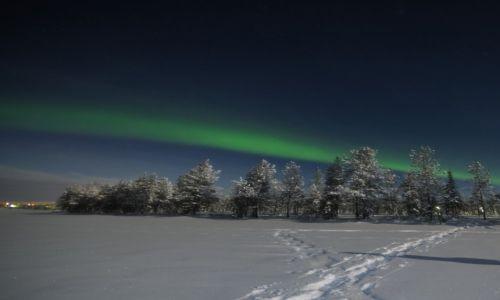 FINLANDIA / północ Finlandii / Laponia / zorza polarna
