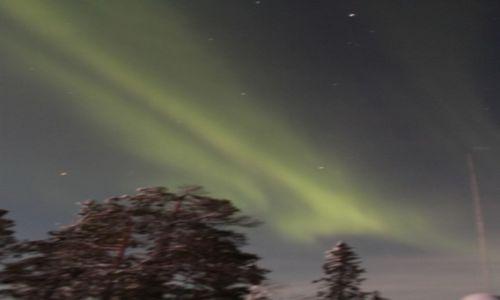 Zdjecie FINLANDIA / laponia / okolice parku Yllas / zielona zorza