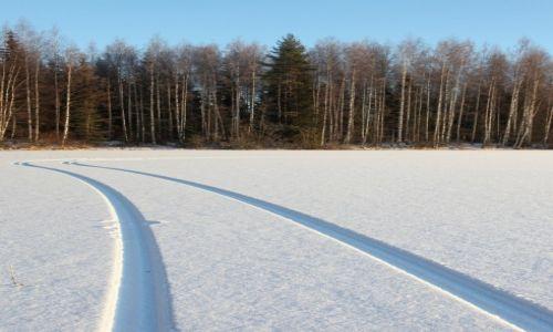 Zdjecie FINLANDIA / Pohjois-Savo / Vesanto / Droga do lasu... przez jezioro