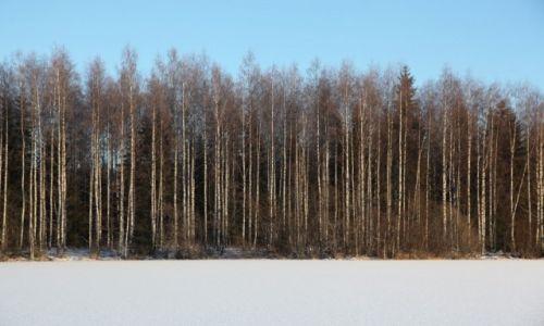 Zdjęcie FINLANDIA / Laponia / Kemi / Nad jeziorem