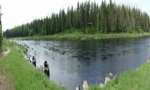 Zdjęcie FINLANDIA / Fińska Laponia / Okolice Kemi / Widok na rzekę  Kemijoki