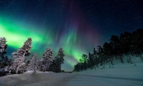 Zdjecie FINLANDIA / Lapland / Kaamanen / Aurora borealis