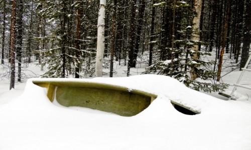 Zdjecie FINLANDIA / Laponia / sieppijarvi  / czekając na lato