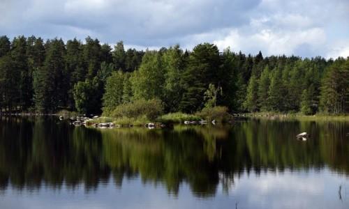 Zdjecie FINLANDIA / Karelia / Vitasaari / Pojezierze Fińskie