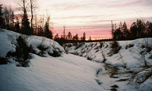 Zdjęcie FINLANDIA / LAPLAND / SRODKOWY LAPLAND / FIŃSKI KRAJOBRAZ