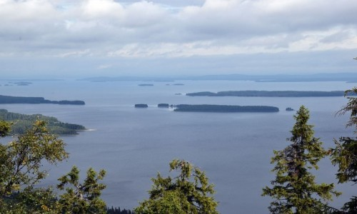 Zdjecie FINLANDIA / Karelia Północna / Ukko-Koli / Jezioro Pielinen