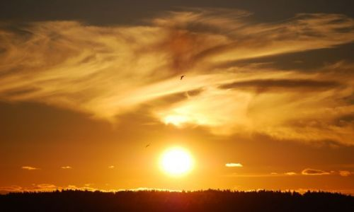 Zdjecie FINLANDIA / Wyspy Alandzkie / Bliżej nieokreślona pozycja..;) / Zachód słońca n