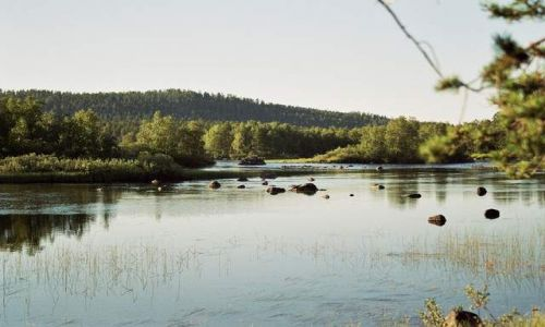 Zdjecie FINLANDIA / brak / Inari / Juutvanjoki