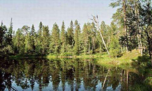 Zdjecie FINLANDIA / brak / Park Narodowy Oulanka / Lustra Oulanki
