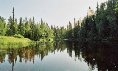 Zdjecie FINLANDIA / brak / Park Narodowy Oulanka / Serce Oulanki