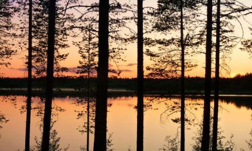 Zdjęcie FINLANDIA / Laponia / Inari Jezioro / Inari przez kratki