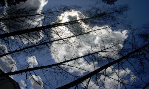 Zdjęcie FINLANDIA / południe kraju / valkeakoski / anioł