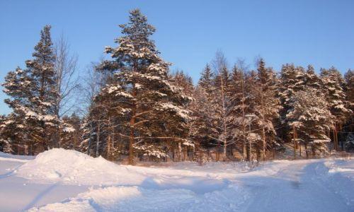 Zdjecie FINLANDIA / południe kraju / Valkeakoski / zima