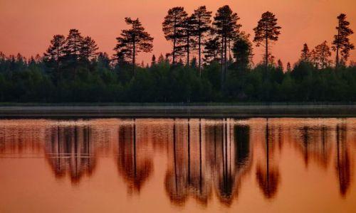 Zdjęcie FINLANDIA / Laponia / Laponia / W krainie jezior