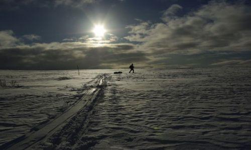 Zdjecie FINLANDIA / Laponia / Finlandia i Norwegia / kolory śniegu