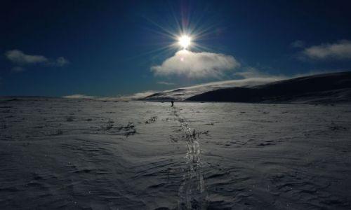 Zdjecie FINLANDIA / Laponia / Finlandia i Norwegia / wędrówka