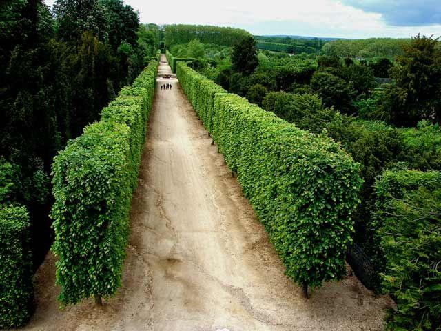 Zdjęcia: Paryż -ogrody Wersalu, Paryż,  spacer po królewskich ogrodach. 2, FRANCJA