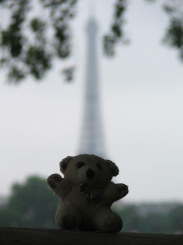 Zdjęcia: Paryż, Paryż, Miś i wieża, FRANCJA