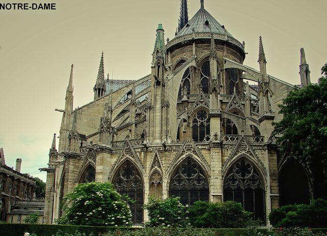 Zdjęcia: Paryż-Katedra Notre - Dame , Paryż , Katedra, FRANCJA