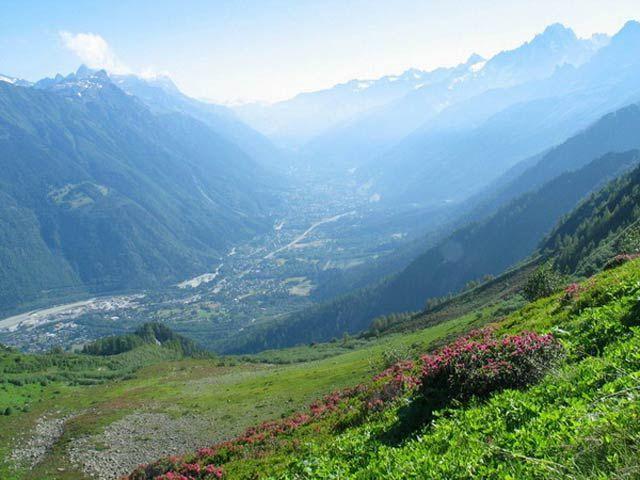 Zdjęcia: widok na Chamnonix, Masyw Mont Blanc, Na szczyt przez alpejskie łąki., FRANCJA