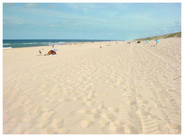 Zdjęcia: Messanges, Akwitania, Plaża, FRANCJA