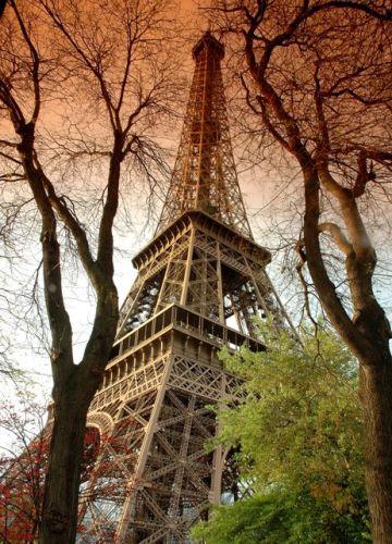Zdjęcia: Paryż, Paryż, Wieża, FRANCJA