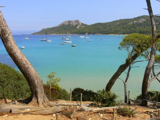 Zdjęcia:  Wyspa Porquerolles, Lazurowe Wybrzeze, Porquerolles, FRANCJA