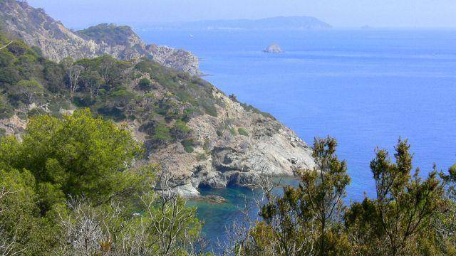 Zdj�cia: Wyspa Porquerolles, Zatoka, FRANCJA
