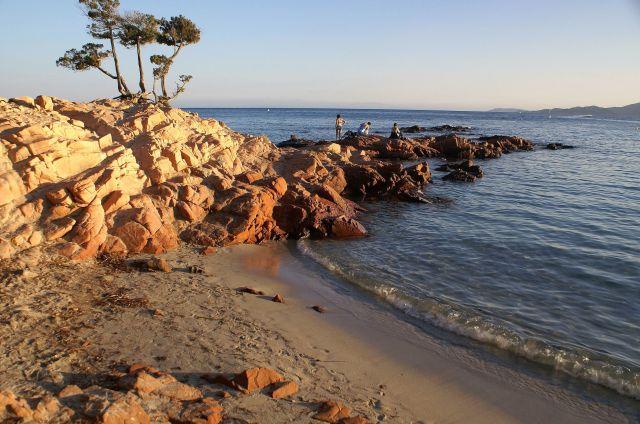 Zdjęcia: Palombaggia Plage, Korsyka, Nadchodzi wieczór, FRANCJA