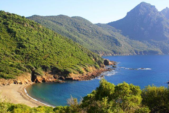 Zdjęcia: Zatoka Porto, wybrzeże zachodnie, Korsyka, W drodze na Girolatę, FRANCJA