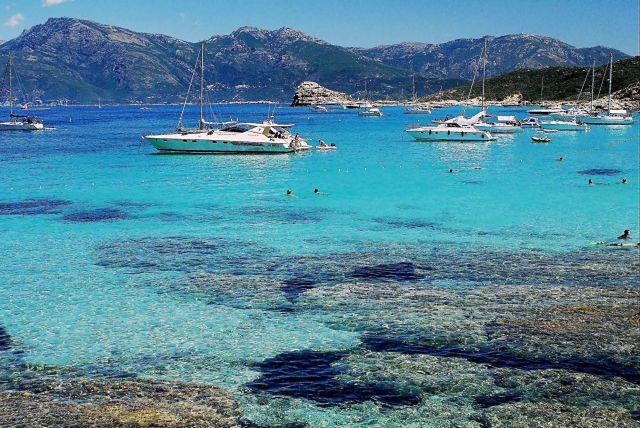 Zdjęcia: Agriates/Saleccia, Korsyka, W toni, FRANCJA