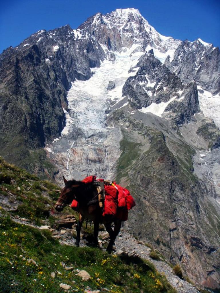 Zdjęcia: Alpy, Chamonix, Tour de Mount Blanc, FRANCJA