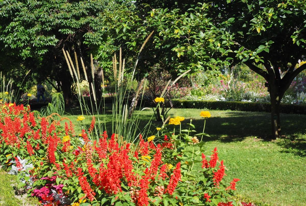 Zdj cia nancy jardin dominique alexandre godron lotaryngia w historycznym ogrodzie dominique - Jardin dominique alexandre godron ...