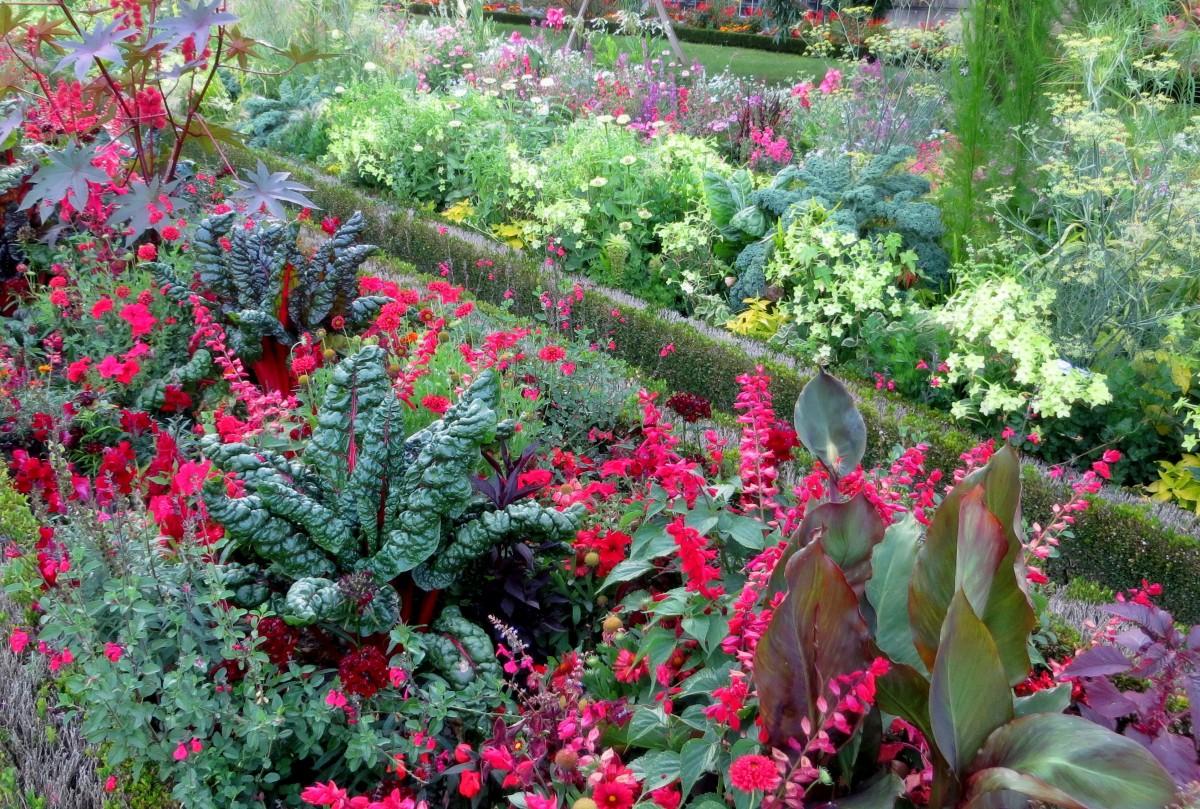 Zdj cia nancy jardin dominique alexandre godron lotaryngia licz si tylko kolory francja - Jardin dominique alexandre godron ...