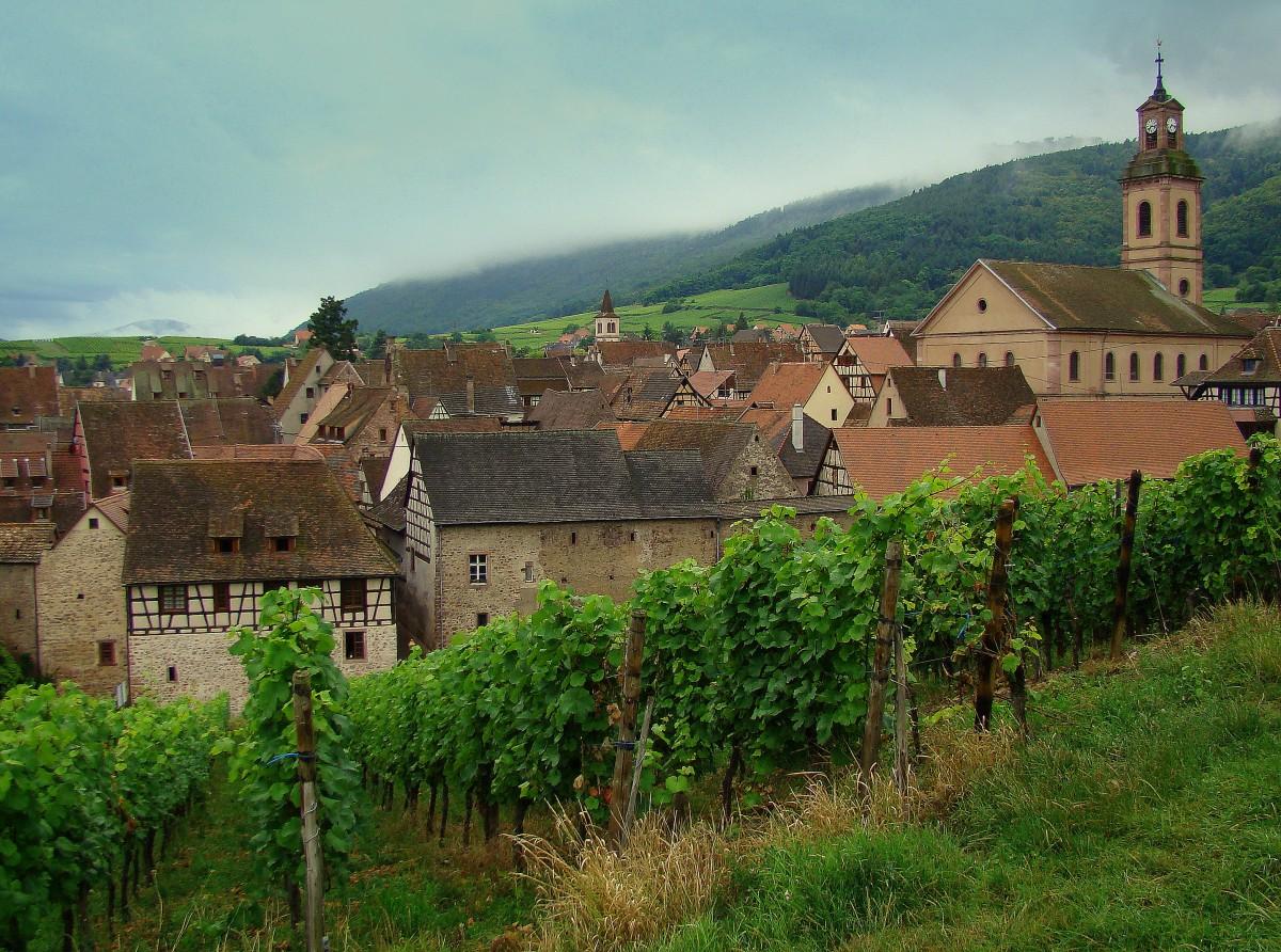 Zdjęcia: Riquewihr, Alzacja, Uroki Alzacji - Riquewihr, FRANCJA