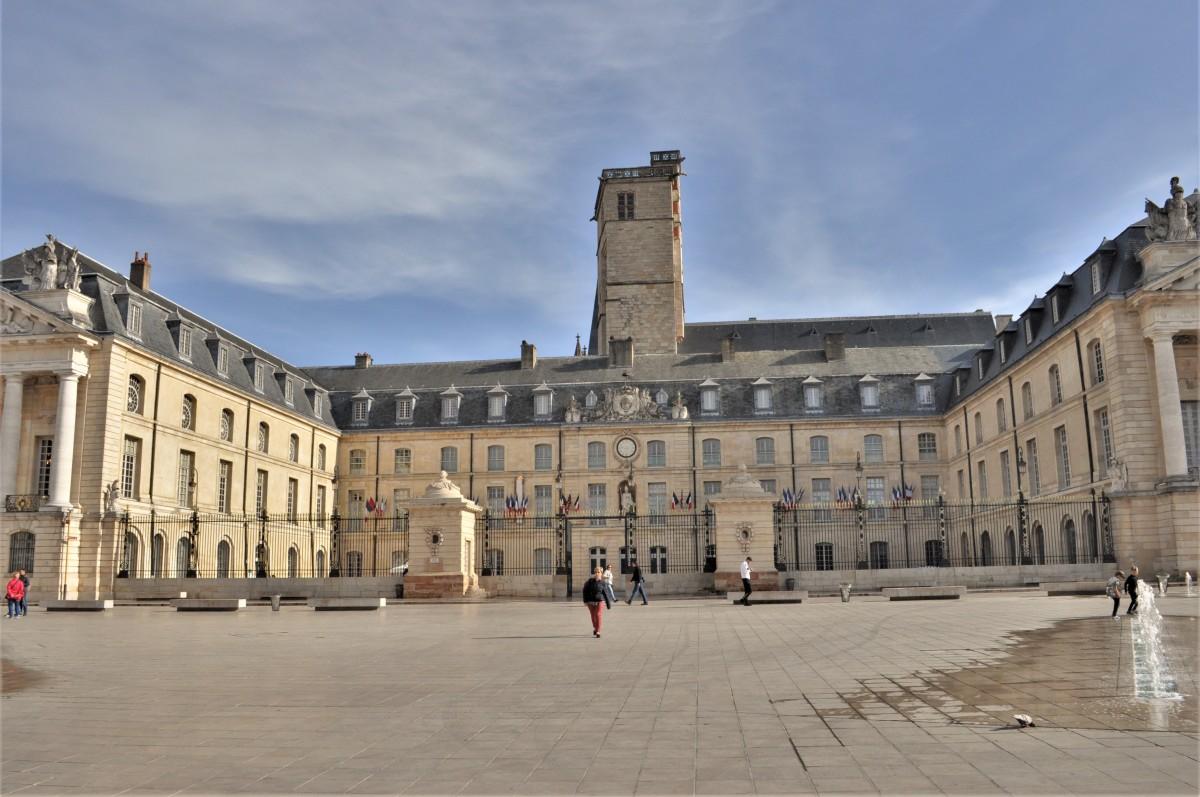 Zdjęcia: Dijon, Burgundia, Pałac Dijon, FRANCJA