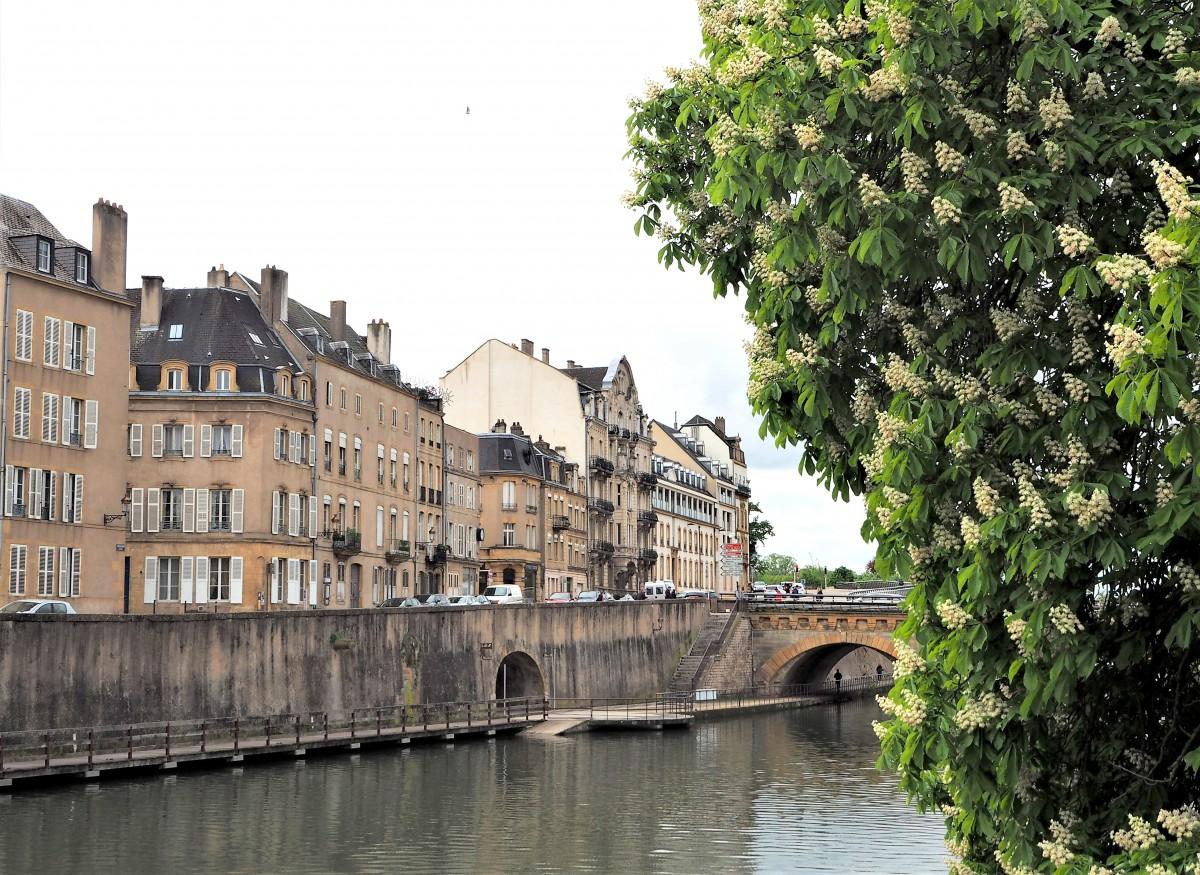 Zdjęcia: Metz, Lotaryngia, znów zakwitły kasztany..., FRANCJA
