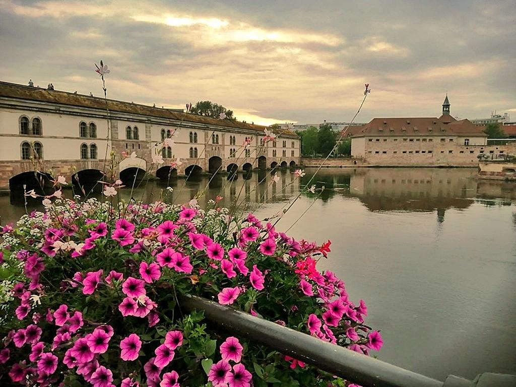 Zdjęcia: Strasburg, Alzacja, Wśród mostów i kwiatów, FRANCJA