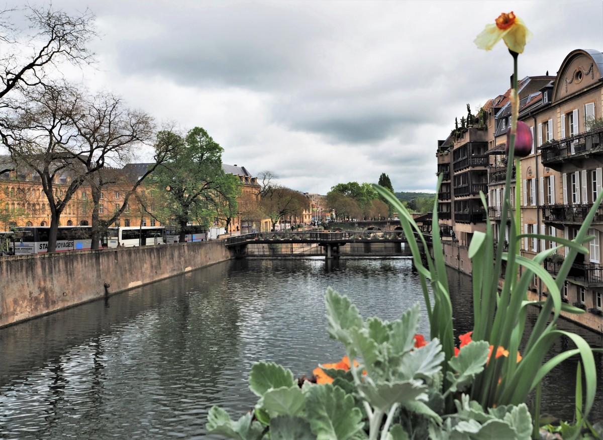 Zdjęcia:  Metz, Lotaryngia, zawsze w kwiatach, jn., FRANCJA