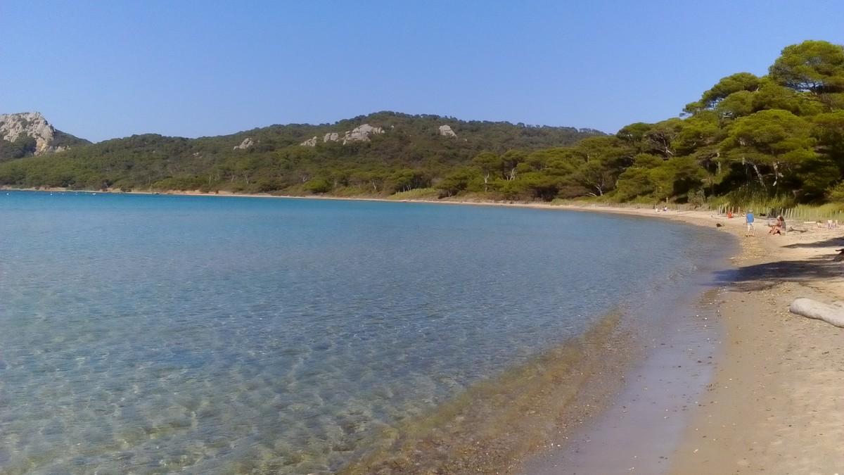 Zdjęcia: Porquerolles, Lazurowe Wybrzeże, Plaża na Porquerolles, FRANCJA
