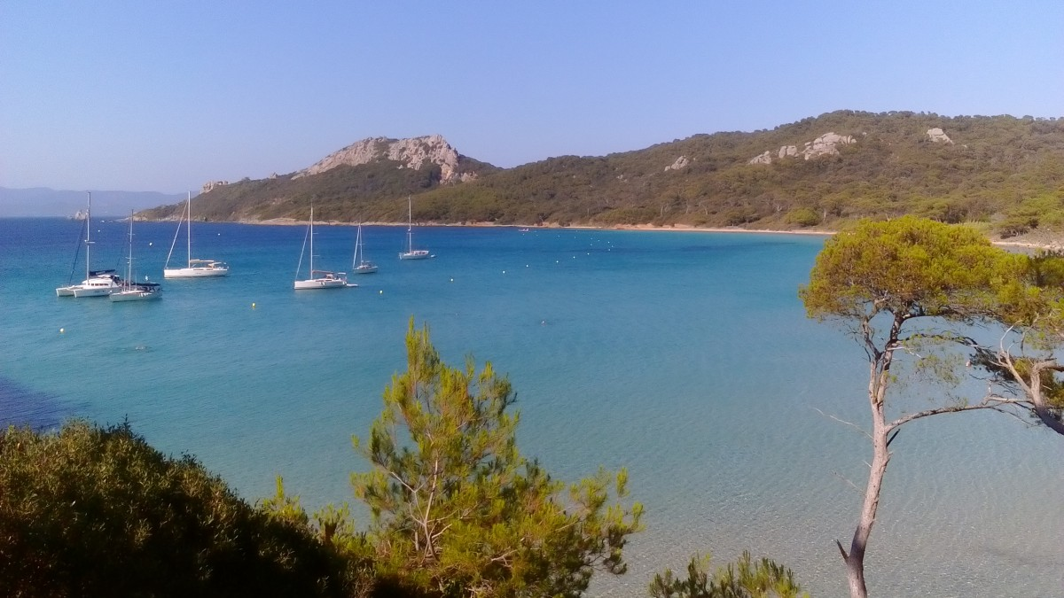 Zdjęcia: Porquerolles, Lazurowe Wybrzeże, Na Porquerolles, FRANCJA