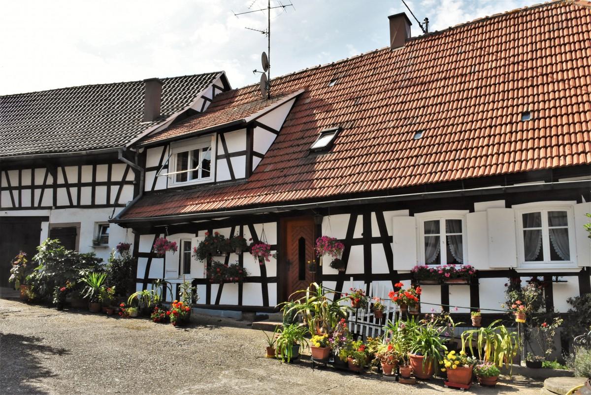 Zdjęcia: Hunspach, Alzacja, Herxheim, stare domy, FRANCJA