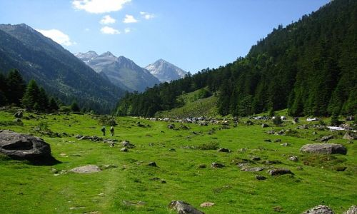 Zdjęcie FRANCJA / ok. Cauterets / Pireneje francuskie / dolina